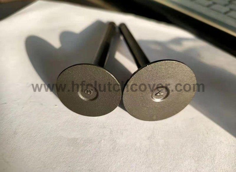 intel valve and exhaust valve 1G896-13110 1G896-13120 for kubota V2203 D1703 D1503 V1903